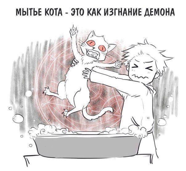 Смех продлевает жизнь!) – 529 фотографий