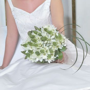 Star of Bethlehem Collection @ Costco for $749: Includes bridal bouquet, 6 bridesmaids, 12 boutineers, 12 corsages etc