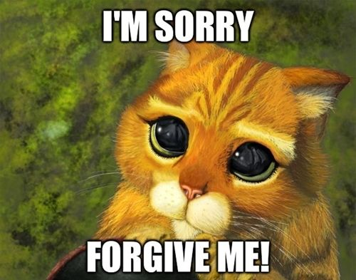 Cute, funny I'm Sorry Pictures with sayings http ...