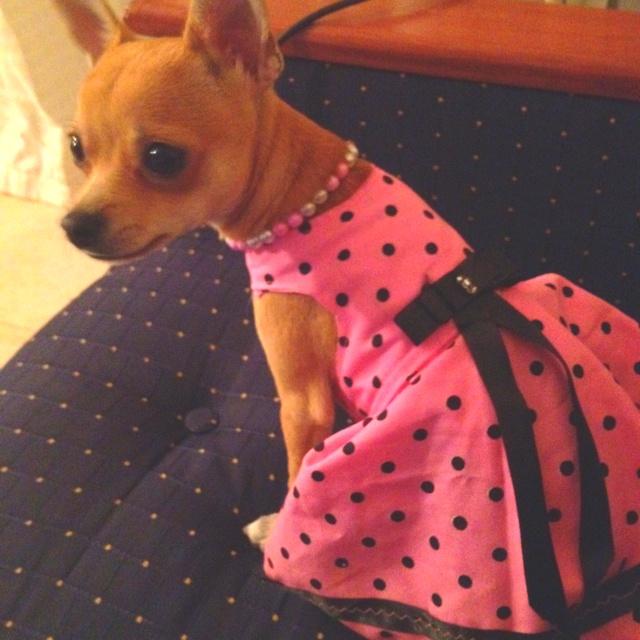 Chloe in a dress
