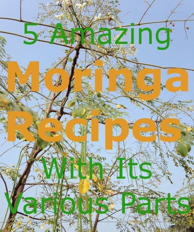 5 Amazing Moringa Recipes With Its Various Parts Fruits Flowers Leaves Moringa Drumstickvegetable Sojnephool Recipe Moringa Recipes Moringa Flower Food