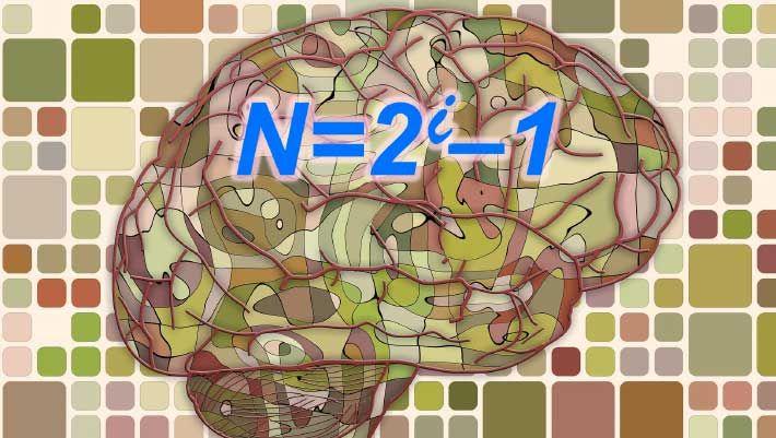 Neuroscientists Say Simple Mathematical Logic Underlies Complex Brain Computations | Neuroscience | Sci-News.com