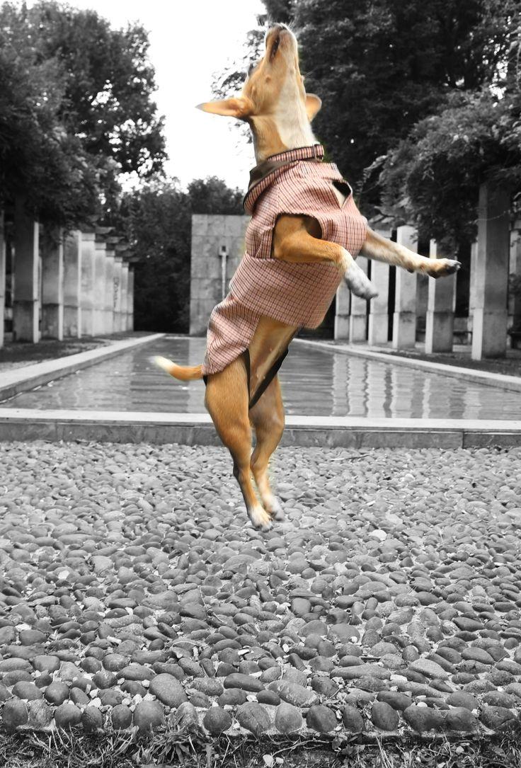 Customized raincoat by Amici di Alia