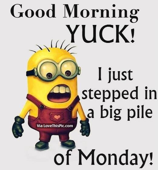 Stepped In A Big Pile Of Monday morning monday good morning monday quotes good morning quotes happy monday minion quotes good morning monday good morning monday images good morning monday quotes