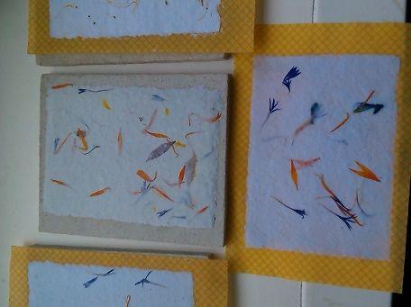 goudsbloem en korenbloemen verwerkt in papier/hand made paper with marigold and conflower
