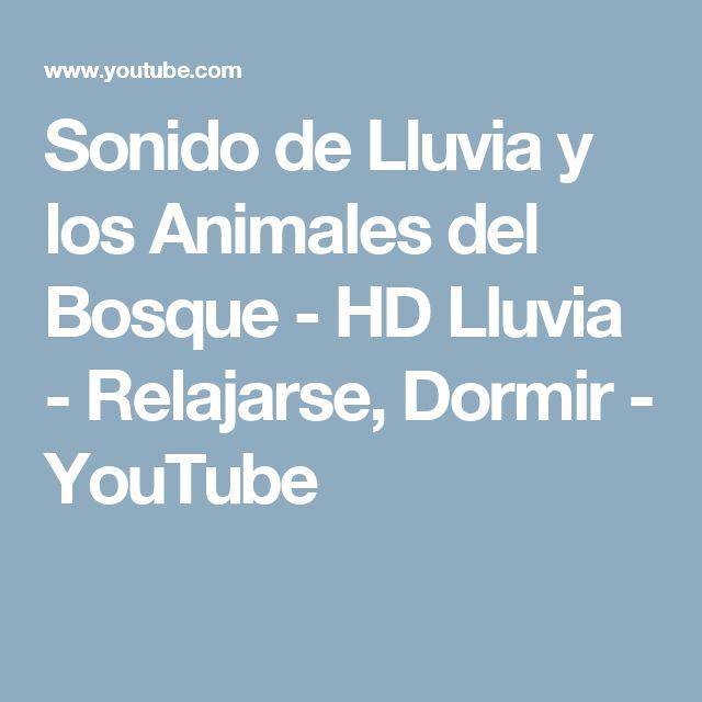 Sonido de Lluvia y los Animales del Bosque - HD Lluvia - Relajarse, Dormir - YouTube