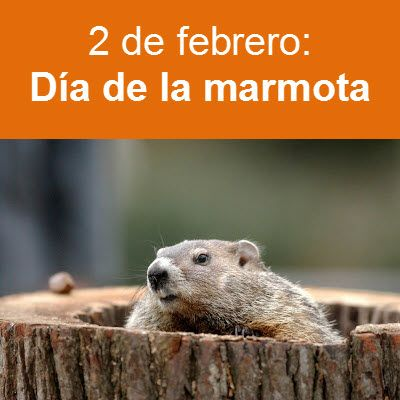 2 de febrero se celebra el d a de la marmota carteles pinterest. Black Bedroom Furniture Sets. Home Design Ideas
