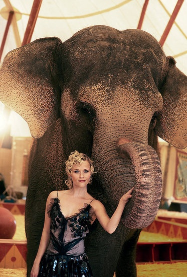 Reese Witherspoon with Tai the elephant.  Such an incredible movie.  Couldn't have been done without the amazing trainers from Have Trunk Will Travel.