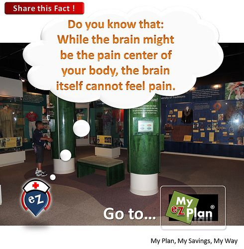 """Amazing Fact 