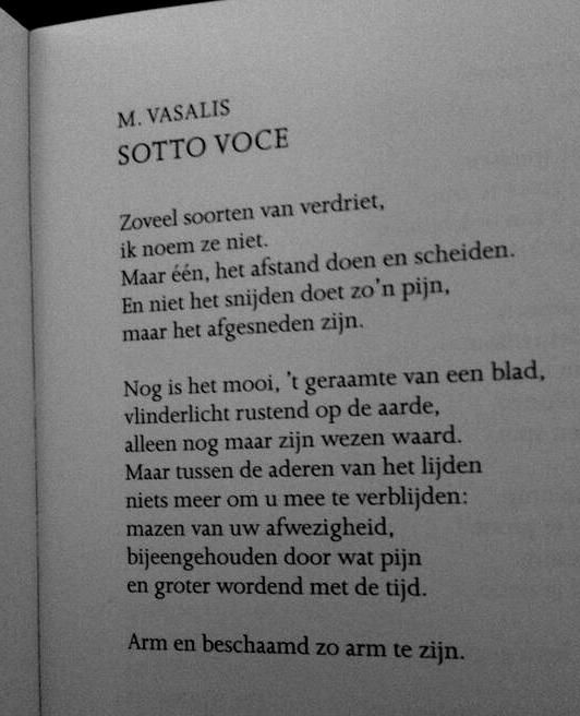 Sotto Voce - Vasalis