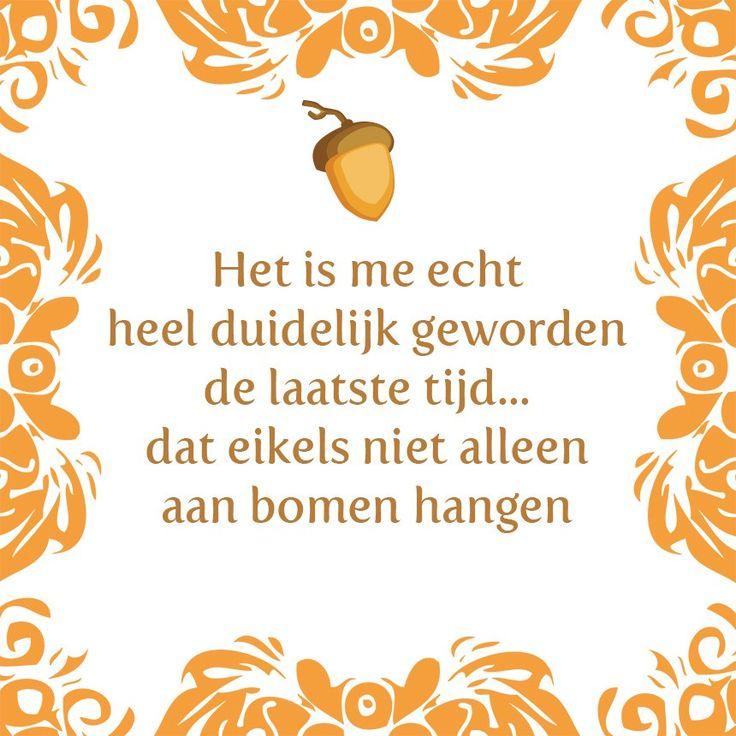 Tegeltjeswijsheid.nl - een uniek presentje - Het is me echt heel duidelijk geworden