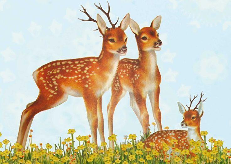 #bambi #grootzus #herten #deer #familiy #Kaart #ansichtkaart #echtepost #post #illustratie #print #hipgemaakt #postcard #snailmail #postcrossing #illustration