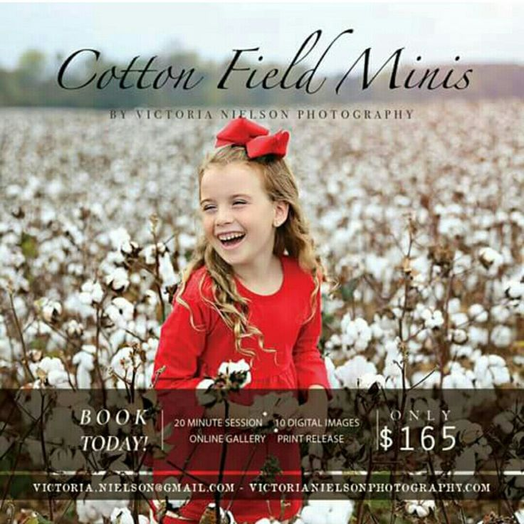 A great photography marketing for fall session from Victoria Nielson Photography. Good luck for your session!