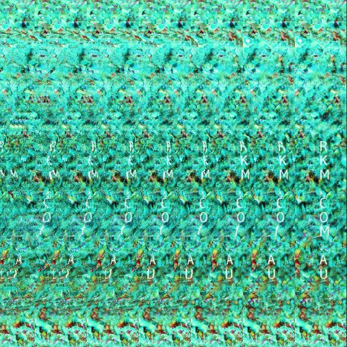 Remember autostereograms ? These are hidden 3D images that were very popular in the mid 1990s