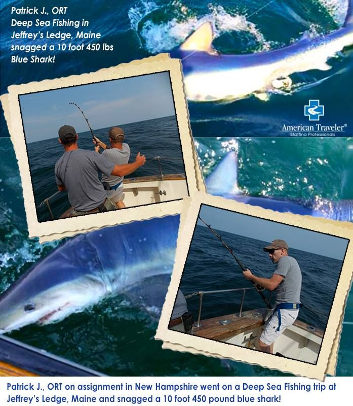 83 best travel nurse adventures images on pinterest for Fishing jobs in maine