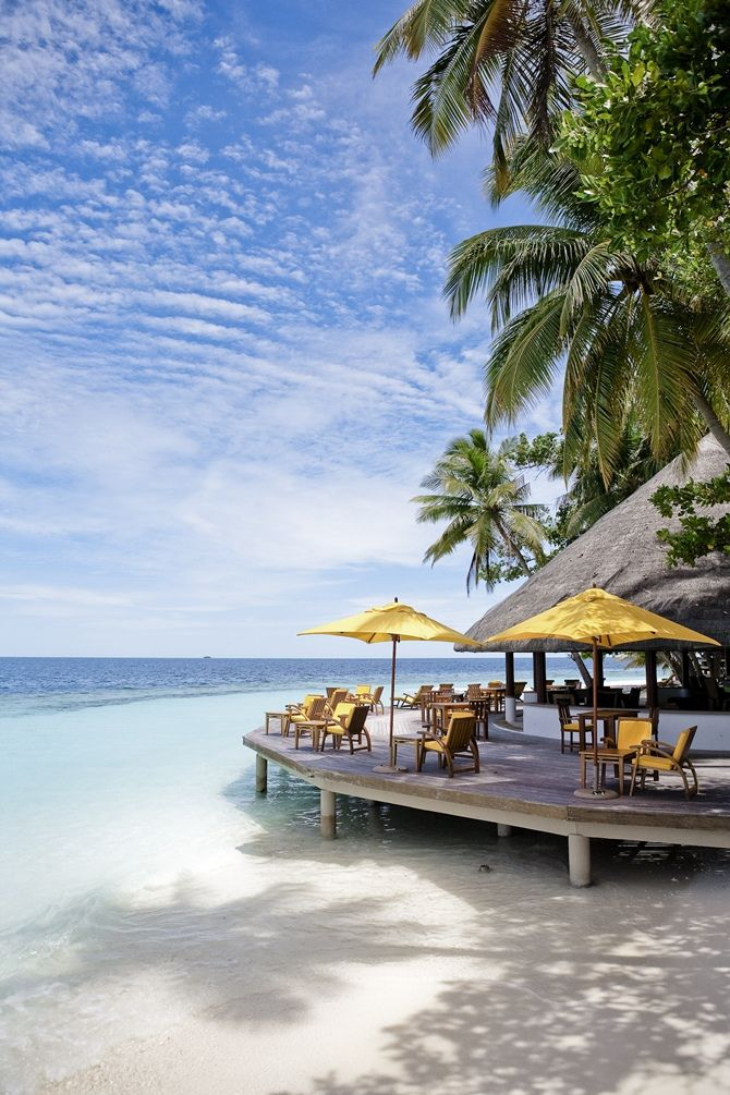 Best My Country Maldives Images On Pinterest Country - Angsana velavaru resort surrounding by blue waters with tropical and contemporary styles maldives