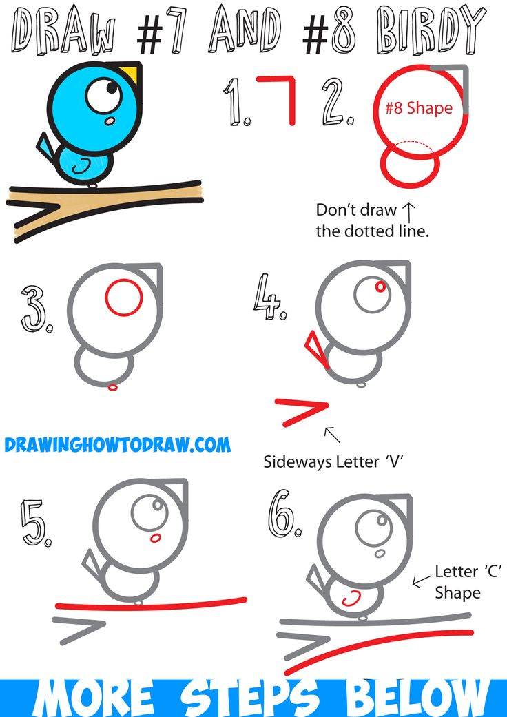 how to draw a cute cartoon bird on a branch with numbers easy step by step