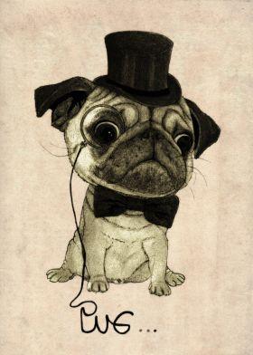 Pug. (Gentle pug) by Barruf; print on metal canvas #vintage #pug #dog…