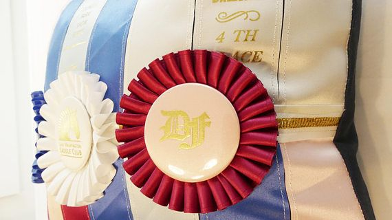 Horse Show Ribbon / Rosette Pillow Cushion COVER ONLY