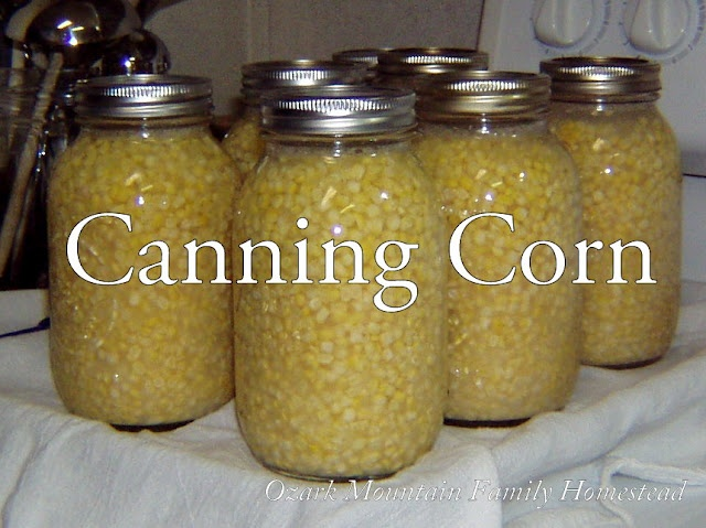 Ozark Mountain Family Homestead:  Canning Corn on the Cob