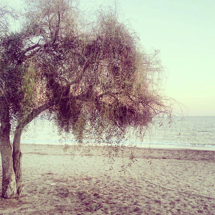 #huzur #anamur #love