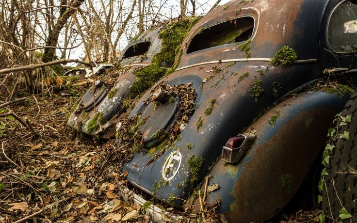 Free HD Wallpapers for your computer: Old cars in dead leaves