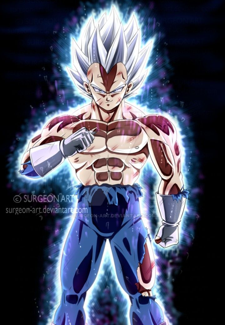 Vegeta Ultra Instinct Mastered Dragon Ball Super Personajes De Dragon Ball Personajes De Goku Dragones