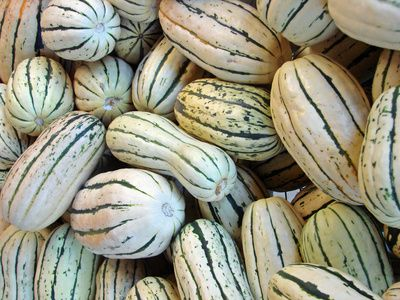 The Nutritional Values Of Delicata Squash | LIVESTRONG.COM