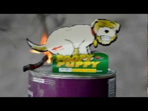 Poopy Puppy Fireworks 2012 HD - YouTube