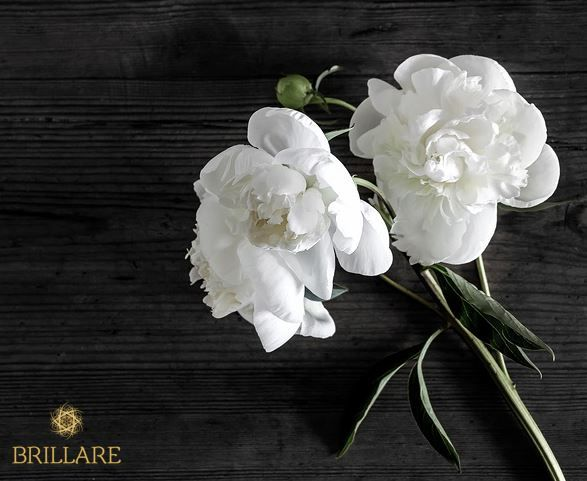 Fragrance: 🌸Floral scents                   🔸Style match: Fits well with a traditional or timeless decor.   🔸Colours: pastel, neutral, pink, grey   🔸Mood: Elicts positive memories, happiness.