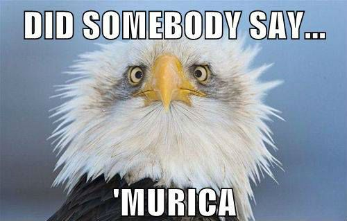Did somebody say 'Murica? - Memes and Comics via Relatably.com
