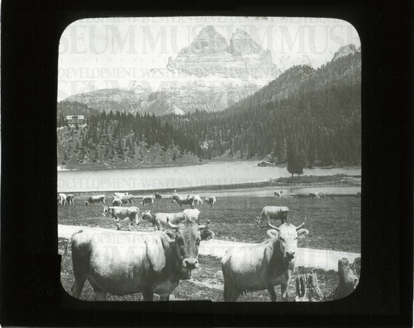 The Drei Zinnen from Lago Misurina, Tyrol, Austria | saskhistoryonline.ca