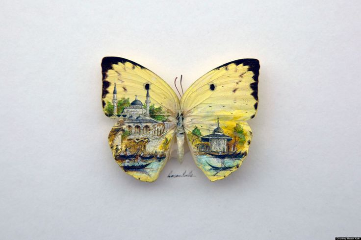 From a single pumpkin seed to delicate butterfly wings, no canvas is too teeny for micro artist Hasan Kale. The talented -- not to mention patient -- artist paints realistic renderings of his hometown of Istanbul on unexpected objects.