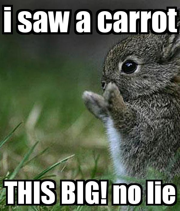 25 Happy Easter Memes To Make Your Friends Family Laugh Happy Easter Funny Easter Quotes Funny Funny Easter Memes