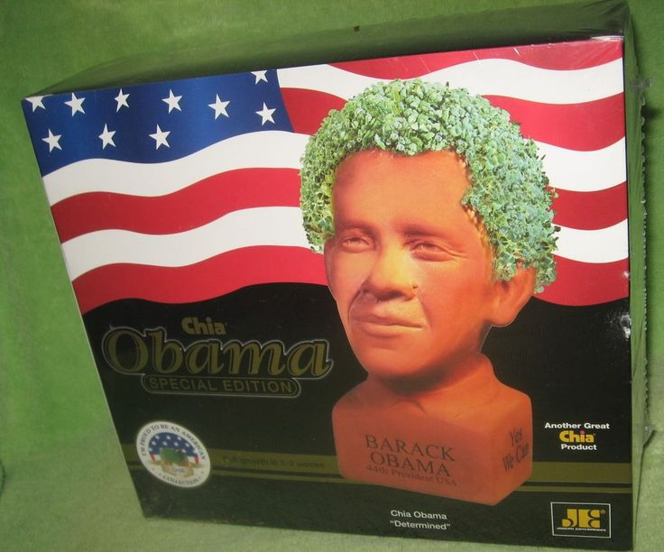 Barack Obama Chia Pet Special Edition DETERMINED - New - Factory Sealed