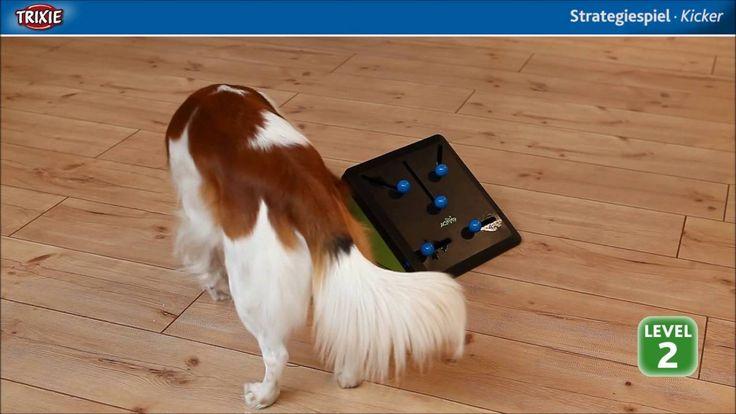 Trixie Kicker Dog Activity Game Simpel maar o zo doel treffend... Voor de goede speurneus... Dat is uw hond toch ook?
