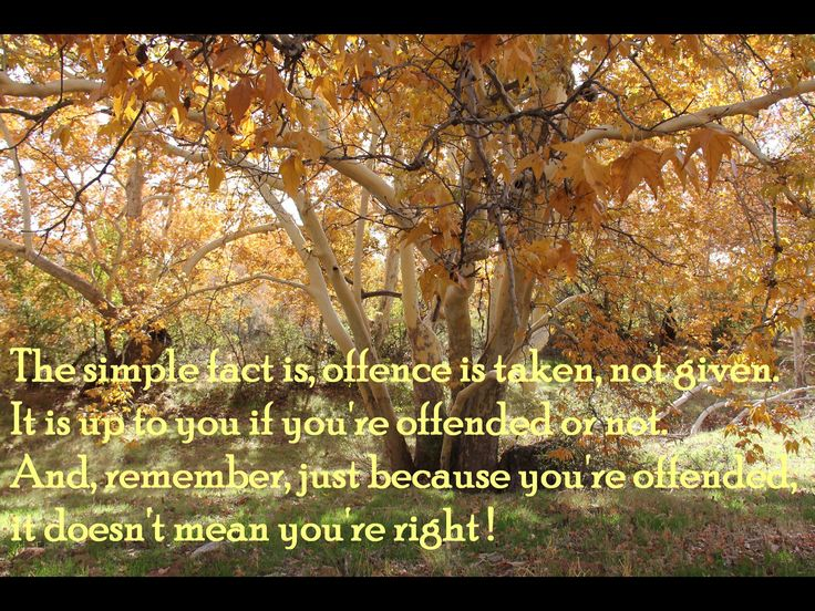 The simple fact is - offence is taken, not given......