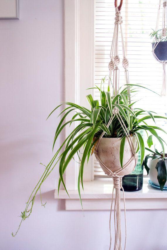 Macrame Plant Hanger / Plant Holder / Hanging Planter / Home Decor / Macrame…