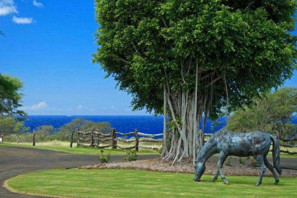 Craigslist Big Island Real Estate