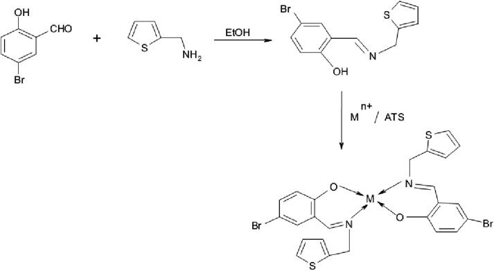 Synthesis and SAR Studies of Potent Antioxidant and Anti-Inflammatory Activities of Imidazole Derived Schiff Base Analogues