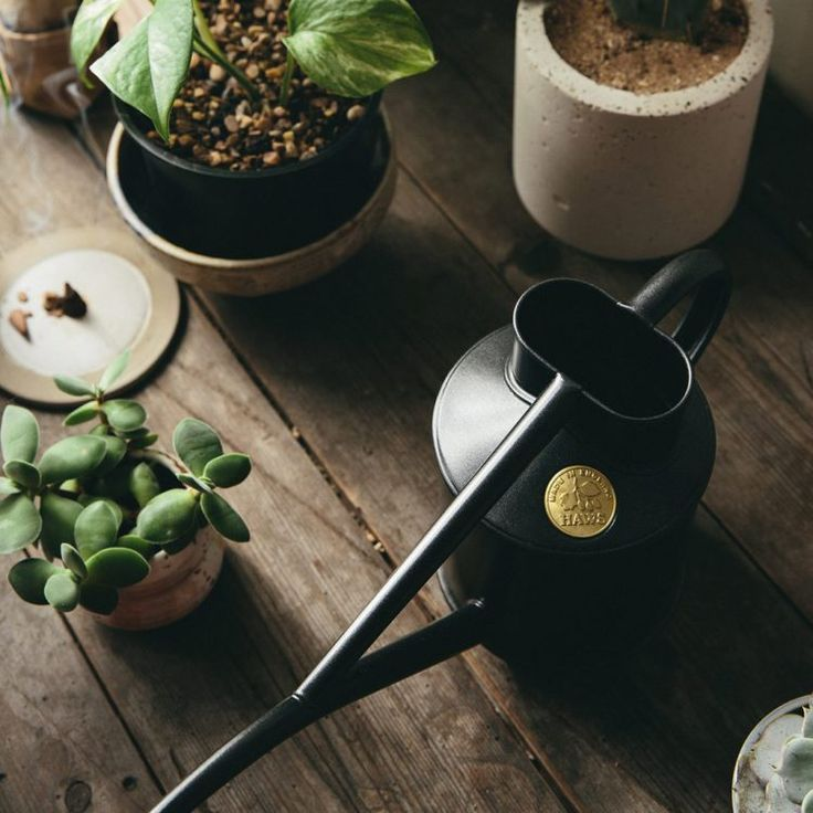 Cool Contemporary Watering Can
