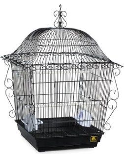Prevue Pet Products Jumbo Scrollwork Bird Cage 220BLK Black, 18-Inch by 18-Inch…