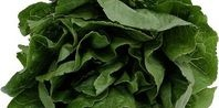 How to Keep Bagged Spinach Fresh | eHow.com