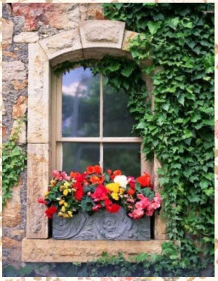 Pin von rosa maria held auf fenster pinterest fenster for Window 5 nmat