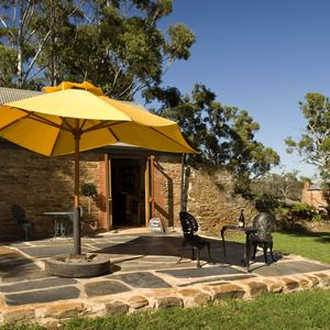 Battle of Bosworth and Springs Seed Wines in McLaren Vale   #mclarenvale #mclaren_vale Take it with you when you travel www.mclarenvaleguide.info