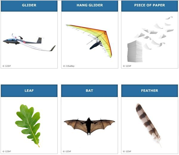 Student Activity - What flies? -   In this activity, students discuss what things can fly and how this happens. They work towards identifying some key characteristics of flight.