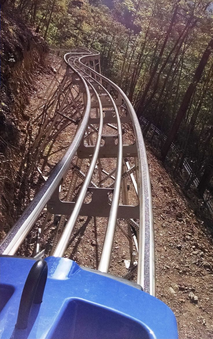 Ski Mountain Coaster - Ober Gatlinburg - Gatlinburg, TN