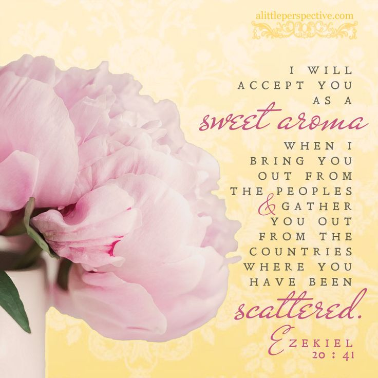 """I will accept you as a sweet aroma when I bring you out from the peoples and gather you out from the countries where you have been scattered. Ezekiel 10:41 