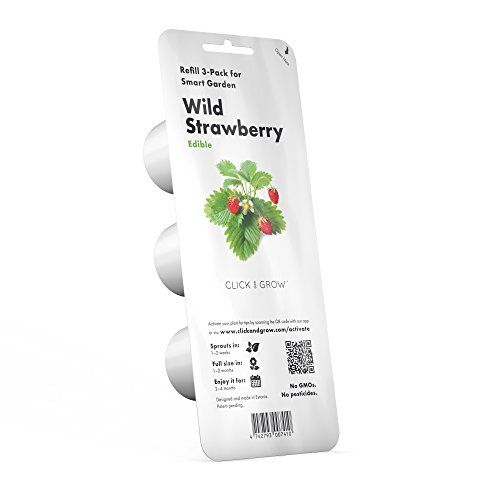 Grow Wild Strawberry for Smart Herb Garden Best Offer. Best price Click & Grow Wild Strawberry Refill 3-Pack for Smart Herb Garden. Grow Wild Strawberry for Smart Herb Garden. Grow new Wil Strawberries at home with ze