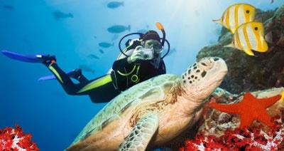 Sukelluskohteiden Top 10